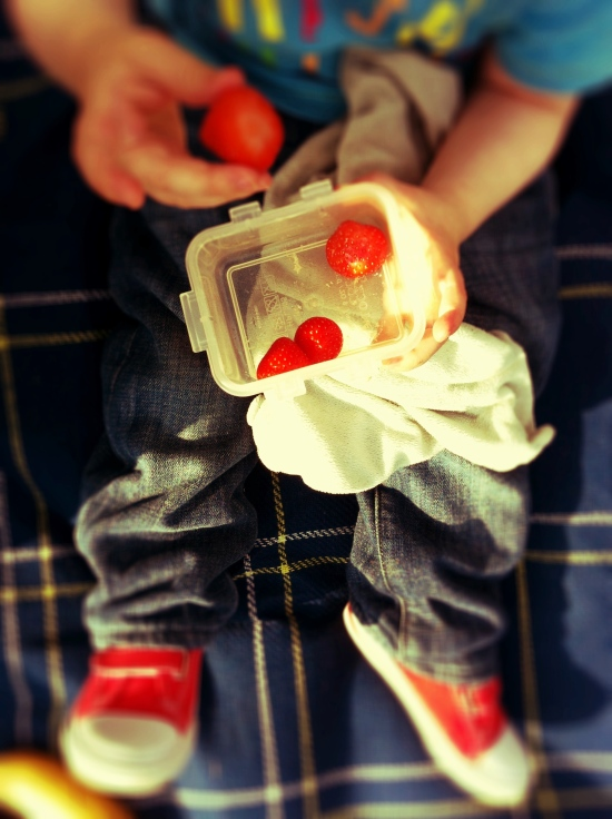 child at picnic