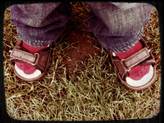 red socks and brown sandals