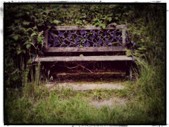 pretty wooden bench