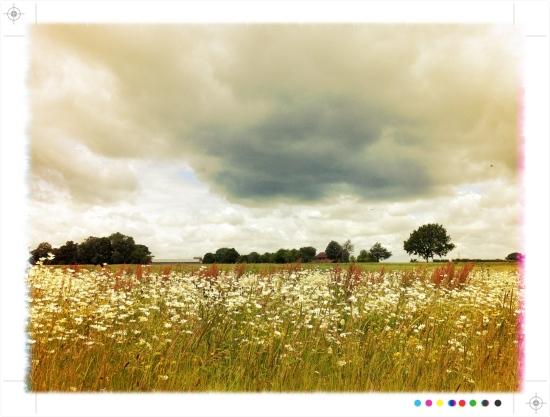Harpenden Haertfordshire