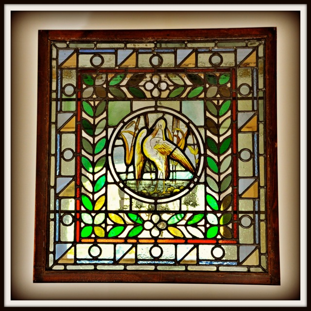 stained glass window with bird