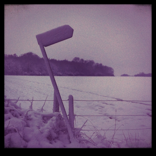 signpost in snow