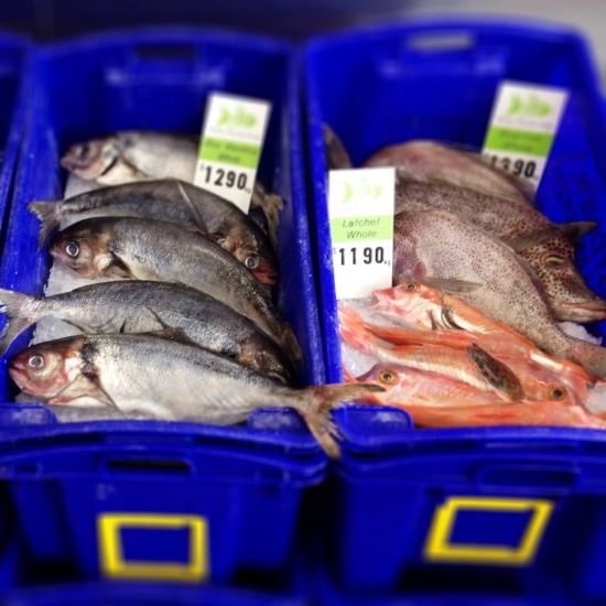 Mako Fresh Fish Hobart