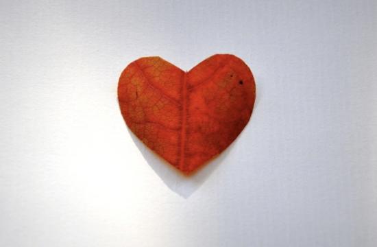 love autumn leaf