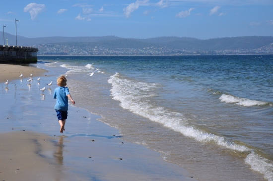 beach Derwent River Hobart Tasmania