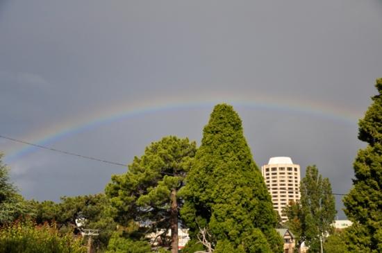 Rainbow Hobart Tasmania