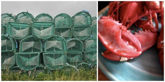 Lobster creels leverburgh isle of harris