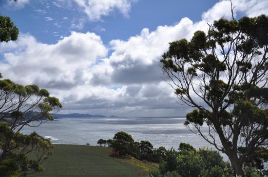 Table Cape tasmania