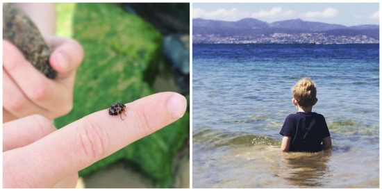 Spring in Hobart Tasmania: ladybird on a finger and young boy in water