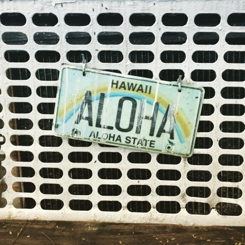 Hawaii - The Aloha State - licence plate