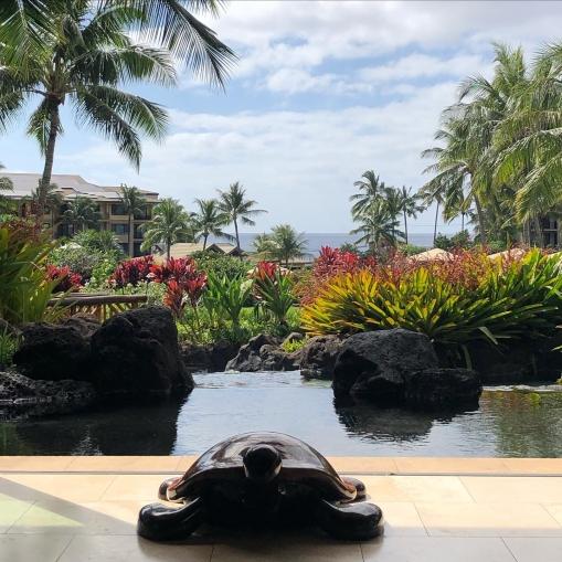 View from the lobby at Koloa Landing Resort Poipu Kauai